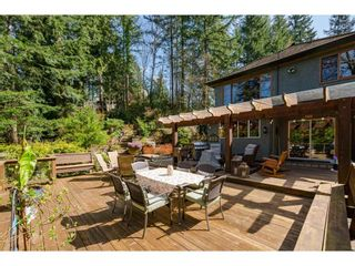 Photo 33: 23387 50 Avenue in Langley: Salmon River House for sale : MLS®# R2562175