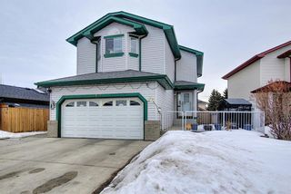Photo 43: 813 Applewood Drive SE in Calgary: Applewood Park Detached for sale : MLS®# A1076322