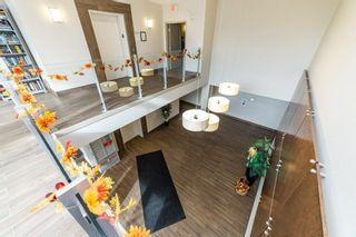 Photo 28: 413 507 ALBANY Way in Edmonton: Zone 27 Condo for sale : MLS®# E4264488