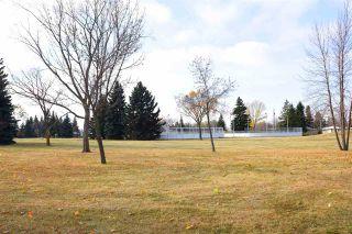 Photo 46: 13520 126 Street in Edmonton: Zone 01 House for sale : MLS®# E4227330