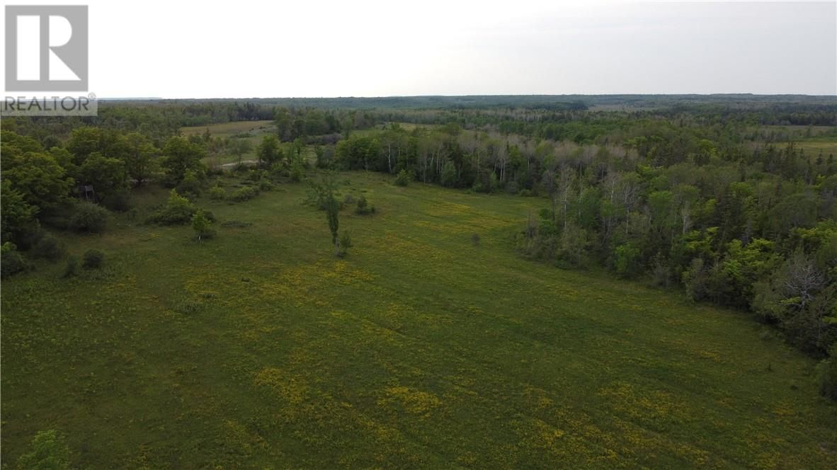 Main Photo: 0 Jay Bryant side road in Assiginack: Vacant Land for sale : MLS®# 2094813