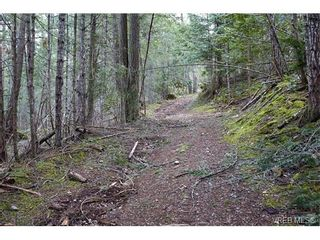 Photo 7: Lot 1 Wilkie Way in SALT SPRING ISLAND: GI Salt Spring Land for sale (Gulf Islands)  : MLS®# 750017