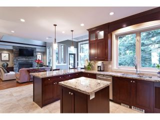 "Photo 18: 2910 146A ST in Surrey: Elgin Chantrell House for sale in ""Elgin Ridge"" (South Surrey White Rock)  : MLS®# F1107201"