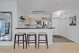 Photo 2: 208 527 15 Avenue SW in Calgary: Beltline Apartment for sale : MLS®# A1140763