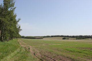 Photo 10: 39103 Highway 20: Sylvan Lake Detached for sale : MLS®# C4192272