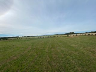 Photo 1: TWP RD 583 Range Rd 271: Rural Westlock County Rural Land/Vacant Lot for sale : MLS®# E4218433