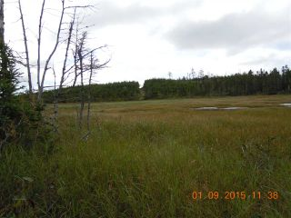 Photo 11: Lot 03-1A Highway 7 in Marie Joseph: 303-Guysborough County Vacant Land for sale (Highland Region)  : MLS®# 201917799
