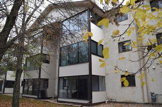 Photo 12: 207A 693 St Anne's Road in Winnipeg: River Park South Condominium for sale (2F)  : MLS®# 202100508