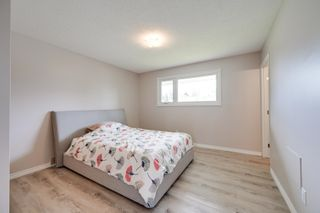 Photo 16: 10916 36A Avenue in Edmonton: Zone 16 House for sale : MLS®# E4246893