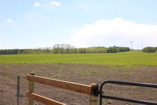 Photo 4: On  Range Road 2.5: Rural Mountain View County Land for sale : MLS®# A1112456