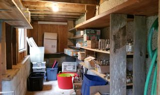 Photo 38: 1541 Croation Rd in Campbell River: CR Campbell River Central House for sale : MLS®# 870733