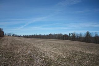 Photo 9: 2nd Line in Roseneath: Land Only for sale : MLS®# 188329