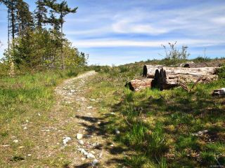 Photo 8: PCL A Curtis Rd in COMOX: CV Comox Peninsula Land for sale (Comox Valley)  : MLS®# 811298