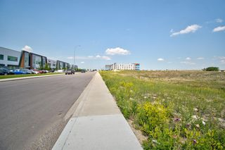 Photo 17: 11124 15 Street NE in Calgary: Stoney 1 Industrial Land for sale : MLS®# A1128526