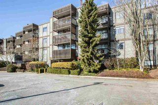 Photo 1: 203 13507 96 Avenue in Surrey: Queen Mary Park Surrey Condo for sale : MLS®# R2348774