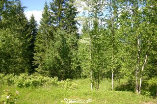Photo 6: 4827 Goodwin Road in Eagle Bay: Vacant Land for sale : MLS®# 10116745