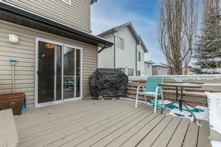 Photo 41: 218 Citadel Estates Heights NW in Calgary: Citadel Detached for sale : MLS®# A1073661