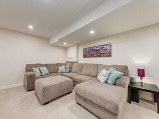 Photo 37: 533 50 Avenue SW in Calgary: Windsor Park Detached for sale : MLS®# A1063858