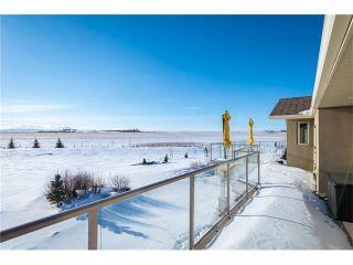 Photo 29: 48142 320 Avenue E: Rural Foothills M.D. House for sale : MLS®# C4098946