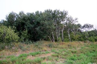 Photo 8: Lot D Bluebird Way in Blucher: Lot/Land for sale (Blucher Rm No. 343)  : MLS®# SK845559