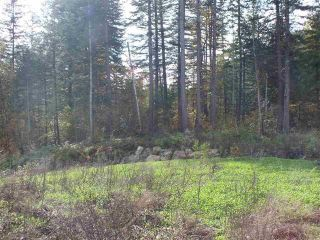 Photo 2: 65457 NORTON Road in Hope: Hope Center Land for sale : MLS®# R2545693