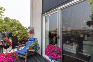 Photo 16: 5 1603 Mcgonigal Drive NE in Calgary: Mayland Heights Row/Townhouse for sale : MLS®# A1141533
