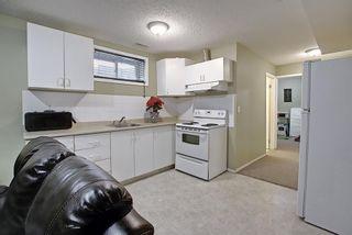 Photo 31: 145 Taravista Crescent NE in Calgary: Taradale Detached for sale : MLS®# A1125771
