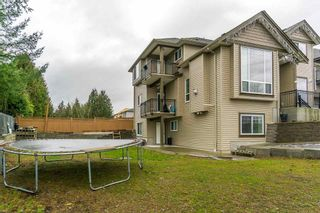 Photo 20: 2 3363 Horn ST in Abbotsford: Central Abbotsford House for sale : MLS®# R2034942