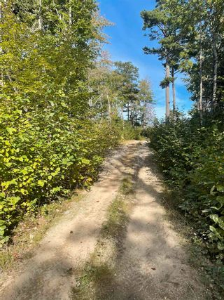 Photo 5: Lot 3 103 Highway in Birchtown: 407-Shelburne County Vacant Land for sale (South Shore)  : MLS®# 202125569