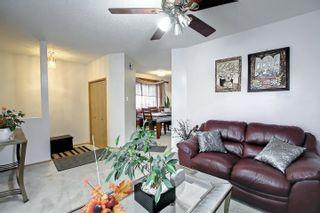 Photo 7: 8014 15A Avenue in Edmonton: Zone 29 House for sale : MLS®# E4265979