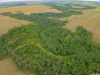 Photo 5: Rm Indian Head 160.39 acres in Indian Head: Farm for sale (Indian Head Rm No. 156)  : MLS®# SK867616