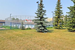 Photo 50: 525 34A Street NW in Calgary: Parkdale Semi Detached for sale : MLS®# A1055557