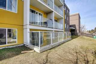 Photo 18: 102 4455A Greenview Drive NE in Calgary: Greenview Apartment for sale : MLS®# A1088042