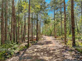 Photo 5: Lot 24 Loon Lane in Aylesford Lake: 404-Kings County Vacant Land for sale (Annapolis Valley)  : MLS®# 202117530