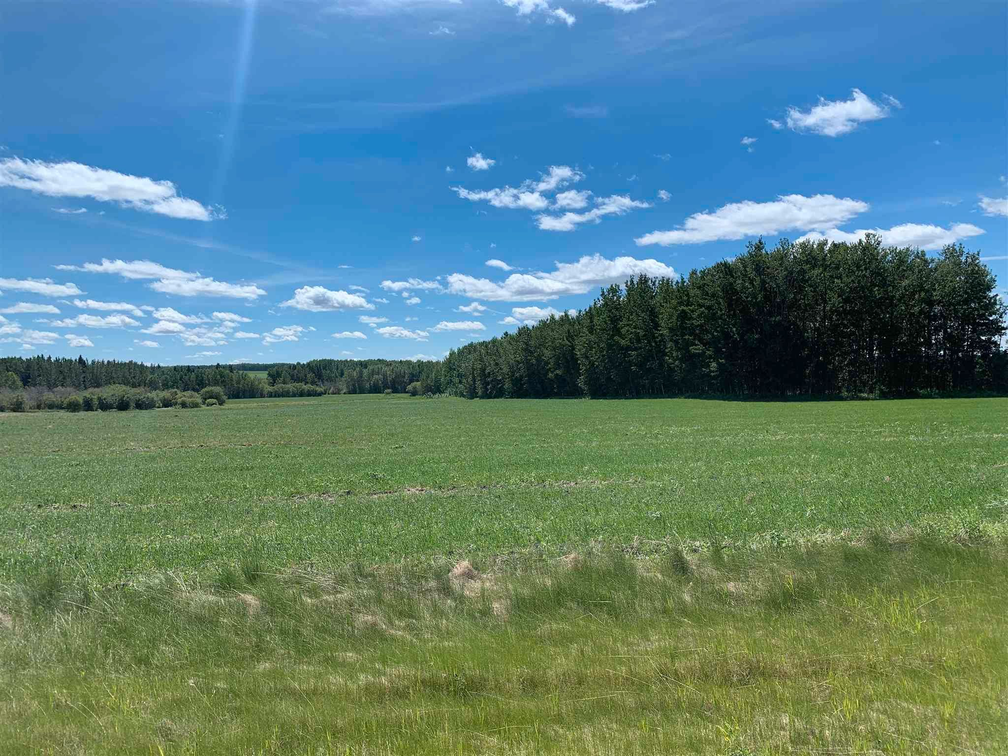 Main Photo: TWP 482 RR 32: Rural Leduc County Rural Land/Vacant Lot for sale : MLS®# E4249796