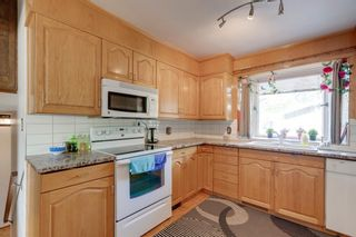 Photo 12: 2140 8 Avenue NE in Calgary: Mayland Heights Detached for sale : MLS®# A1115319