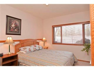 Photo 21: 109 DOUGLASVIEW Rise SE in Calgary: Douglasdale Estates House for sale : MLS®# C4040431
