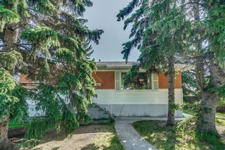 Photo 4: 5920 BUCKTHORN Road NW in Calgary: Thorncliffe Detached for sale : MLS®# C4172366