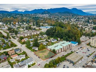 "Photo 7: 7368 JAMES Street in Mission: Mission BC Land for sale in ""DOWNTOWN MISSION"" : MLS®# R2509685"