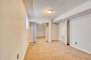 Photo 45: 355 Whitman Place NE in Calgary: Whitehorn Detached for sale : MLS®# A1046651
