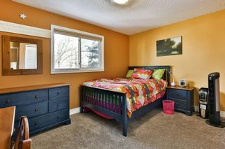 Photo 20: 56 MACEWAN GLEN Drive NW in Calgary: MacEwan Glen House for sale : MLS®# C4173721