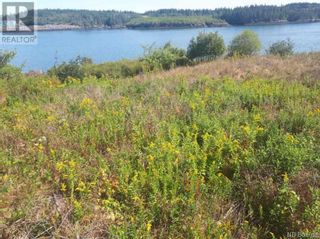 Photo 8: 637 Wellington Road in Blacks Harbour: Vacant Land for sale : MLS®# NB060608