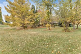 Photo 43: 80011 Highwood Meadows Drive E: Rural Foothills County Detached for sale : MLS®# A1042908