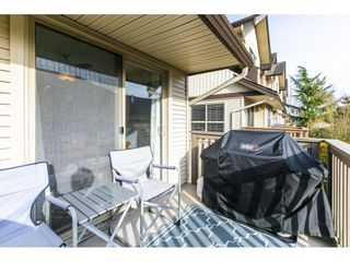 "Photo 33: 83 20350 68 Avenue in Langley: Willoughby Heights Townhouse for sale in ""SUNRIDGE"" : MLS®# R2560285"