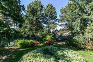 Photo 36: 15108 56 Avenue in Edmonton: Zone 14 House for sale : MLS®# E4248241