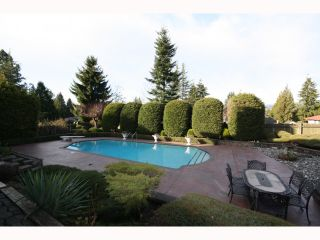 "Photo 9: 6404 CHARING Court in Burnaby: Buckingham Heights House for sale in ""Buckingham Heights"" (Burnaby South)  : MLS®# V814427"