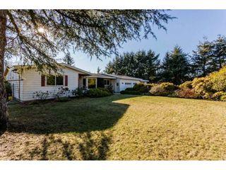 Photo 14: 16910 23RD Avenue in Surrey: Pacific Douglas House for sale (South Surrey White Rock)  : MLS®# R2136702
