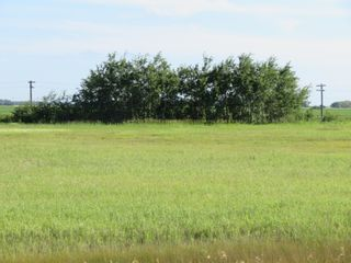 Photo 2: 0 PTH 15 Highway in Dugald: RM Springfield Vacant Land for sale (R04)  : MLS®# 202016001
