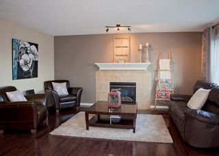 Photo 11: 214 CRYSTAL GREEN Place: Okotoks House for sale : MLS®# C4115773