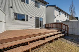 Photo 8: 20235 56 Ave NW: Edmonton House Duplex for sale : MLS®# E4238994